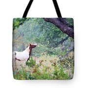 Horse 018 Tote Bag