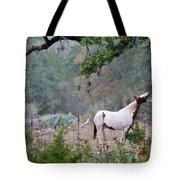 Horse 019 Tote Bag