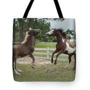 Horse Aerobics Tote Bag
