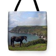 Horse Along Coastal Path Cornwall Tote Bag