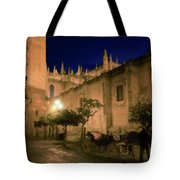 Horse And Carriage Seville Spain Tote Bag