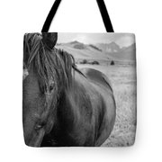 Horse And Sawtooth Mountains Tote Bag
