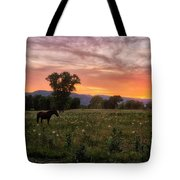 Horse At Sunset Tote Bag