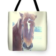 Horses Use Complex Facial Expressions Nearly Identical To Humans  Tote Bag by Hilde Widerberg