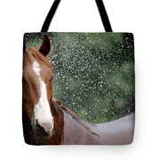 Horse Bath I Tote Bag