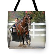 Horse Carriage Racing In Delmarva Tote Bag