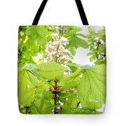 Horse Chestnuts Tote Bag