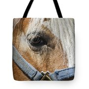 Horse Close Up Tote Bag