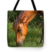 Horse Cuisine  Tote Bag