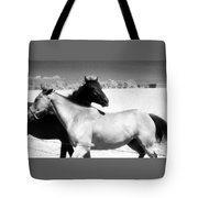 Horse Friends Two  Tote Bag