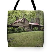 Horse Grazing In The Yard Of A Mountain Tote Bag