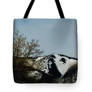 Horse Head In The Winter Tote Bag