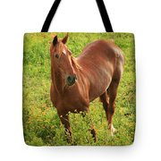 Horse In A Field With Flowers Tote Bag