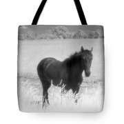 Horse In A Summer Dreamfield  Tote Bag