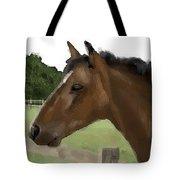 Horse In Field Tote Bag