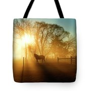 Horse In The Fog At Dawn Tote Bag