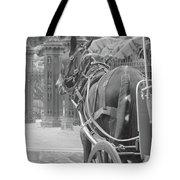 Horse In The Quarter Tote Bag