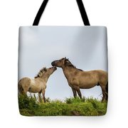 Horse Love Tote Bag