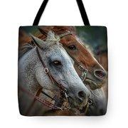 Horse Pair Tote Bag