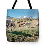 Horse Pasture Tote Bag
