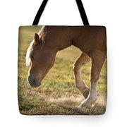 Horse Pawing In Pasture Tote Bag by Steve Gadomski