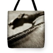 Horse Play Tote Bag
