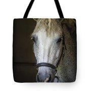 Horse Portrait Tote Bag
