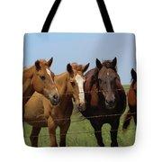 Horse Quartet Tote Bag