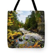 Horse Race Rapids 2 Tote Bag