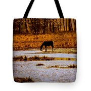 Horse Silhouetted Tote Bag
