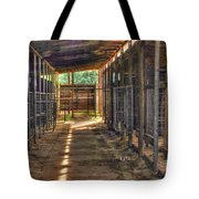 Horse Steabels  Tote Bag