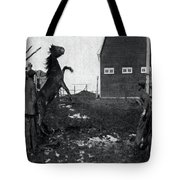 Horse Trainers Tote Bag
