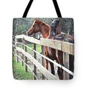 Horse Whisperers Tote Bag
