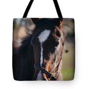 Horse Whispering Tote Bag
