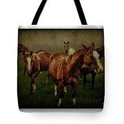 Horses 31 Tote Bag