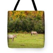 Horses Enjoying A Beautiful Autumn Day Tote Bag