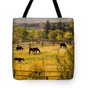 Horses Grazing In The Late Afternoon Tote Bag