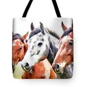 Horses - Id 16217-202757-3803 Tote Bag