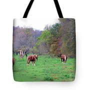 Horses In Autumn Amish Country Tote Bag