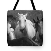 Horses In Black And White Tote Bag