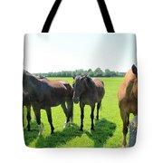 Horses In Bridgehampton Tote Bag