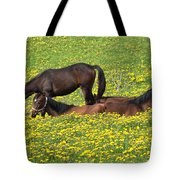 Horses In Daisy Field Tote Bag