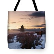 Horses In Snow At Sunset Tote Bag