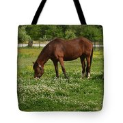Horses In The Meadow 2 Tote Bag