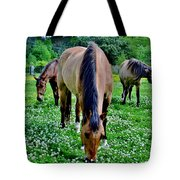 Horses In The Meadow Tote Bag