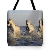 Horses In Water Tote Bag