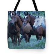 Horses Looking Tote Bag