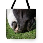 Horses Mouth Tote Bag