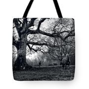 Horses On A Foggy Morning In Black And White Tote Bag