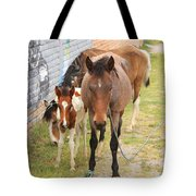 Horses On A Street Tote Bag